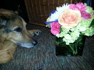 Tuki and flowers